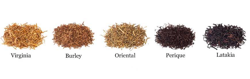 Ферментацияприводит к чёткому разделению на различные типы